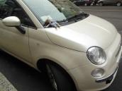 Paul und ein Fiat500
