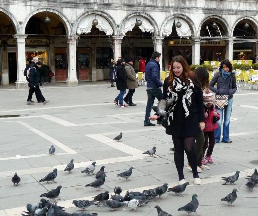 Tauben auf dem Markusplatz