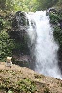 Bali_verkleinert12401