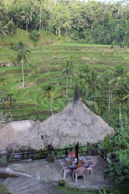 Bali_verkleinert3001