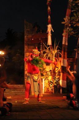 Bali_verkleinert6101