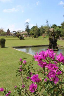 Bali_verkleinert7501