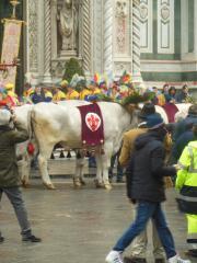 DSCN7516 Florenz