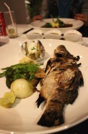 IMG_5354 Koh Phi Phi